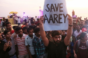 Don't cut anymore trees, says SC on Mumbai's Aarey